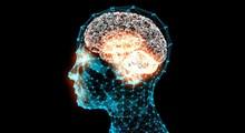 چگونه هوش مان را بالا ببریم ؟ (بخش سوم)