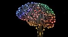 چگونه هوش مان را بالا ببریم ؟ (بخش اول)