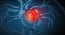راهکارهای خانگی درمان تپش قلب (بخش اول)