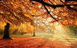 آشنایی با بیماری های فصل پاییز
