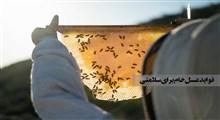 فواید عسل خام برای سلامتی (بخش دوم)