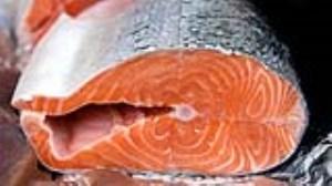 خاصیت ماهی سالمون برای سلامتی (بخش سوم)