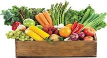 خوردنی هایی برای در امان ماندن از سرطان (بخش اول)