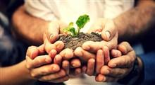 درختکاری و حفظ طبیعت در نگاه معصومین