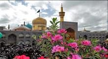 توصیه امام رضا(ع) در روزهای آخر شعبان/ میثم مطیعی