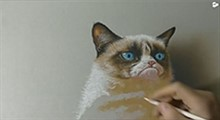 آموزش طراحی گربه