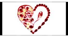 ترفند | گل کاغذی قلبی