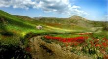 تماشای طبیعت بی نظیر جاده کلات به مشهد