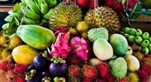 میوههای عجیب و غریب جنوب شرق آسیا