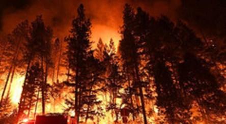 ادامه آتشسوزی در ایالت کالیفرنیا