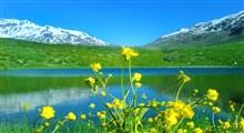ترانه میهنی «ایران من»/ مهرداد کاظمی