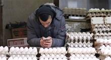 بحران تخممرغی در تل آویو و حیفا زیر سایه شیوع کرونا