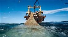 نمونهای از غارت کشتیهای ترال چینی در دریای مکران