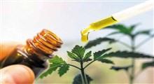 داروهای گیاهی کرونا مورد تایید