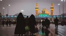 استوری | دلتنگ زیارت کربلا: سید مهدی حسینی