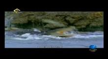 مستند شگفتی های خلقت (2) - امواج سهمگین سونامی