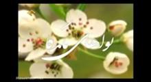 نواهای ماندگار -تلاوت آیه 191 سوره مبارکه آل عمران با نوای اساتید غلوش ، منشاوی ، اللیثی ، شحات