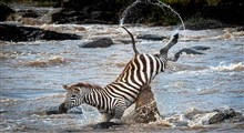 مستند پارکهای ملی آفریقا (قسمت چهل و یکم)