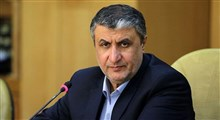 جعبه سیاه هواپیمای اوکراینی در ایران خوانده میشود