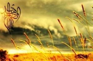 علائم آخرالزمان و راهکار امام علی(ع) در عبور از این فتنهها