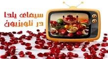 از «دورهمی» مهران مدیری تا «شب آرام» رضا رشیدپور در شب یلدای تلویزیون