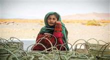 «زیورک» روایت دخترکی ساربان به مقاومت کویر