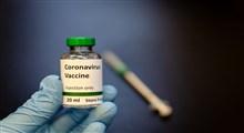 واکسن ویروس کرونا با موفقیت روی موشها آزمایش شد