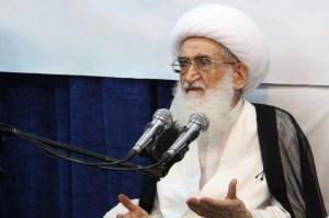 انتقاد آیتالله نوریهمدانی از حذف نام شهید از تابلو معابر