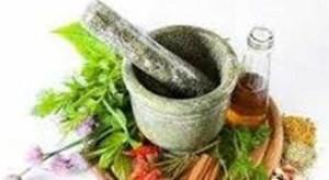 درمان پوکی استخوان از طریق داروی گیاهی تولیدشده در ایران