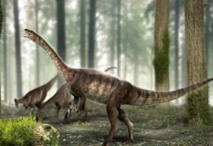 اسکلت نوعی دایناسور گیاهخوار در جنوب آمریکا کشف شد