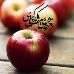 در حرمش بوی سیب را که حس کردی