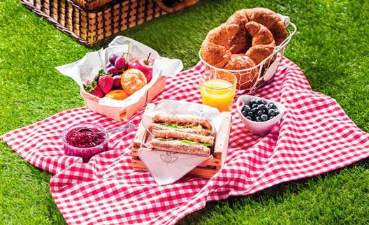 چگونه در تعطیلات تغذیه ی سالم داشته باشیم ؟