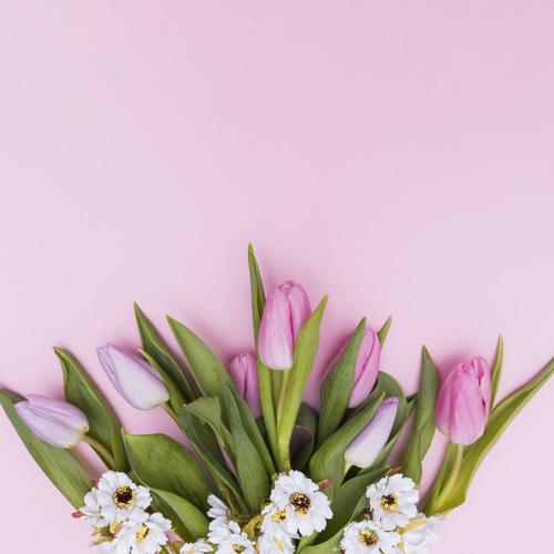 والپیپر استوک گل