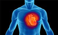 بیماران قلبی چگونه ورزش کنند؟