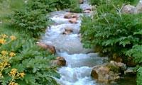 آب در اسلام