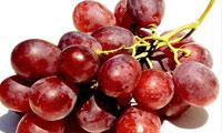 انگور، خون را تصفیه می کند