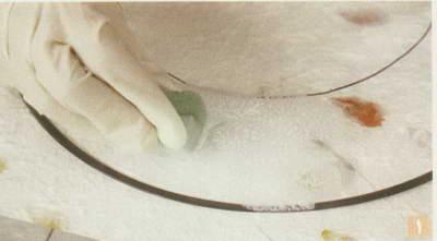 تزیین شیشه با گلهای لاله عباسی