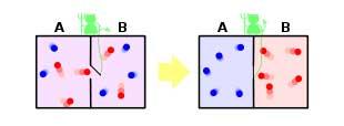 شیطانک ماکسول و قانون دوم ترمودینامیک