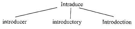 مهارت های مطالعه صحیح برای درس خواندن(2)
