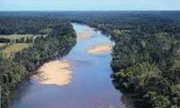 حقایق زیست بوم ساوانا (دشت بی درخت، زمین هموار savanna(h):)