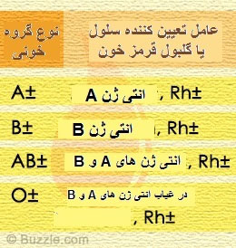 جدول انواع گروه خونی