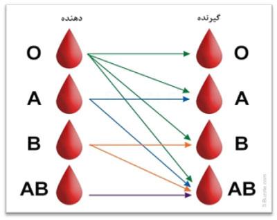 بهترین گروه خونی