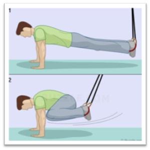 تمرینات ورزشی برای عضلات مورب در مردان