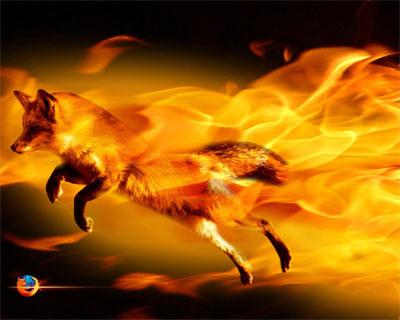 دانلود Mozilla Firefox v22 0 نرم افزار  دانلود موزيلا دانلود نرم افزار
